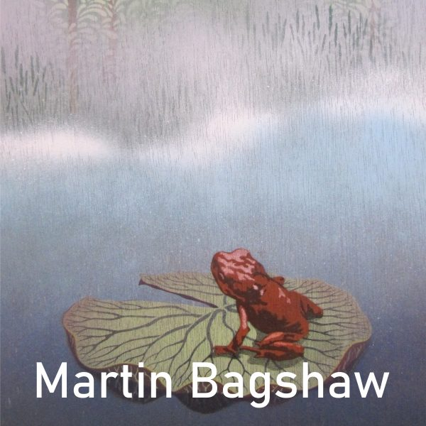 A look at Martin Bagshaws frog themed piece for the Window Gallery Art Gallery 2020 Calendar