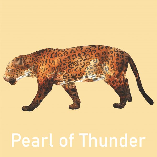 A look at Pearl of Thunders Jaguar piece for the Window Gallery Art Gallery 2020 Calendar