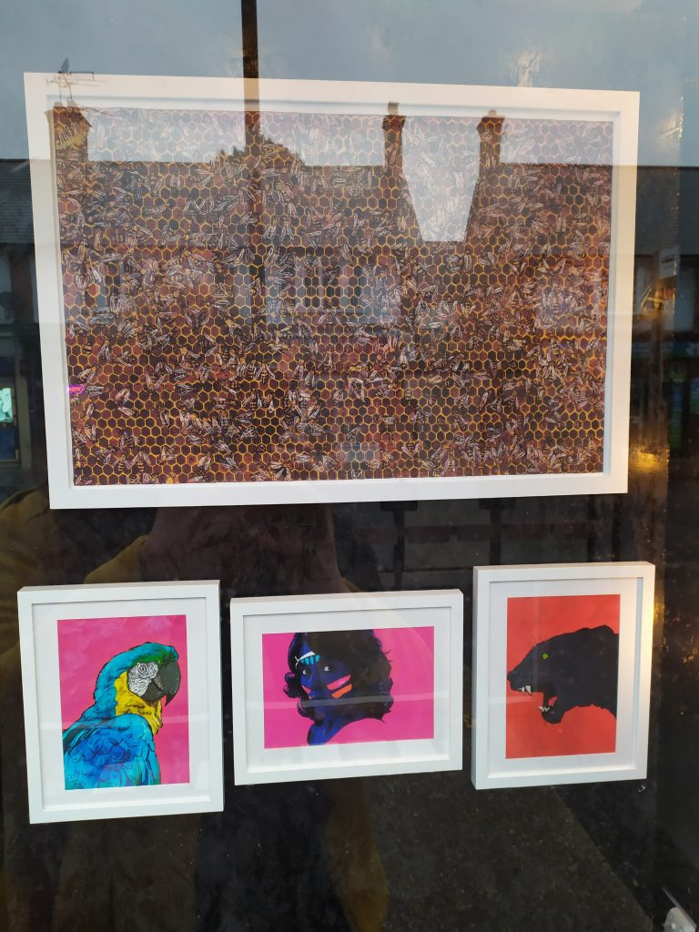 A look at some of the illustrations in the Matthew Brazier Exhibition at the Window Gallery