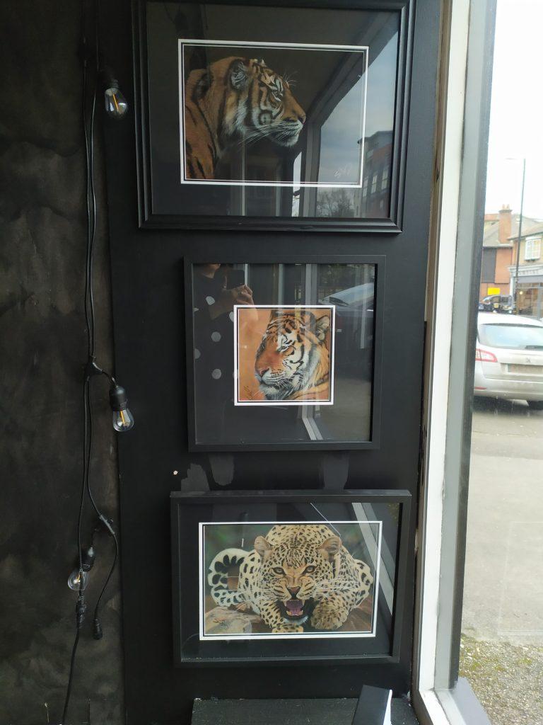 Simon Bragg Exhibition