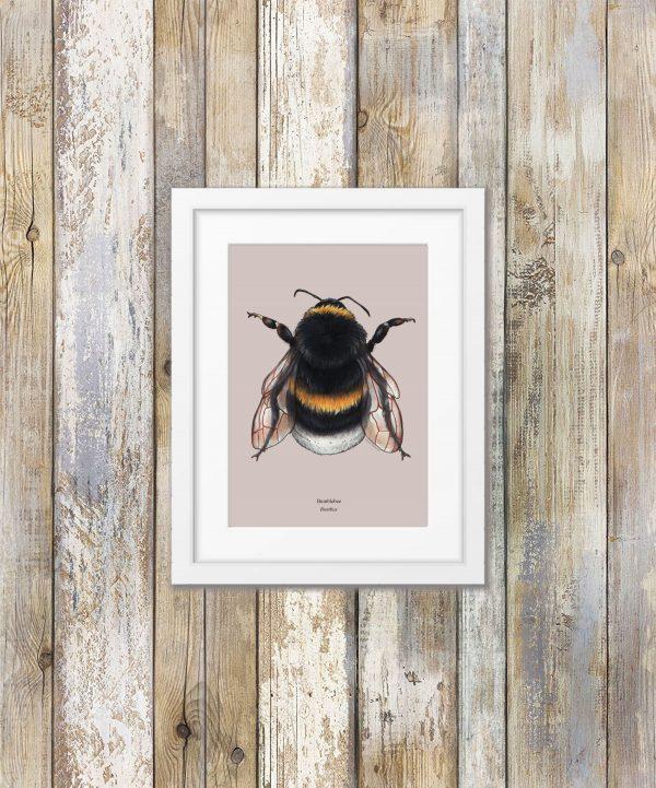 Pearl of Thunder Bumblebee