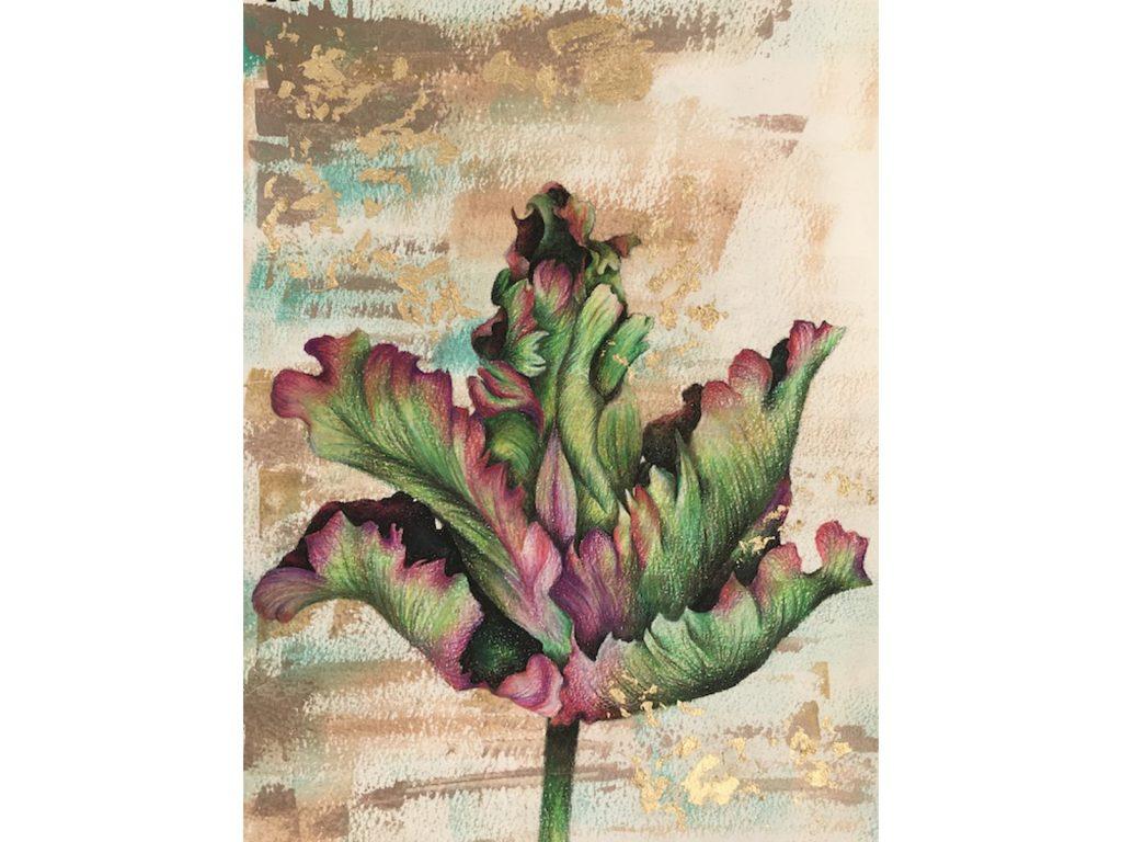 Tulip Drawing 2