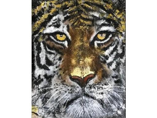 Tiger - Delia Keddie